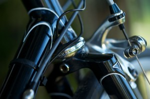 Fork Crown Detail 2, Bill Stevenson's Personal Cycle Sportive Bike (Photo courtesy of Doug Rosenfield)